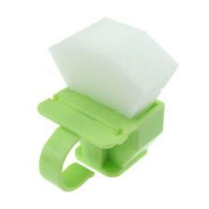 Picture of Foam Endo Ring Holder with Ruler