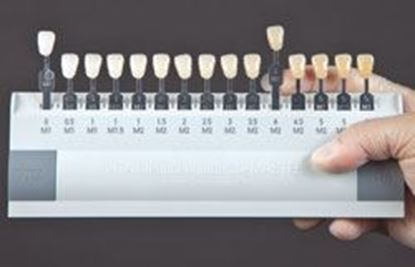Picture of Universal Shade Guide - 16 Standard Tabs